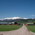 Perkes Herferd Ranch by © Loree McComb