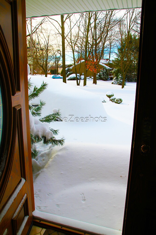 My car is buried in the snow by ZeeZeeshots