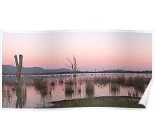 Sunrise at Lake Fyans Poster