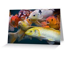 gul fisk Greeting Card
