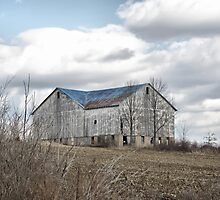 The Barn Stands Alone by Monnie Ryan