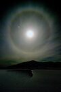 Halo ! by Michael Treloar