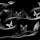 Butterflies-they always give feeling of freedom/ Black and white by haya1812
