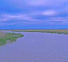 Beaufort, SC Marsh by PeteReid
