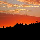 Sunset Over The Rooftops at Hove by TonyCrehan
