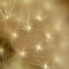 """""""Dandelion Delight"""" by Bronwyn Munro"""