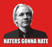 Haters Gonna Hate - Assange by ANewKindOfWater