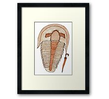 Trilly the trilobite Framed Print