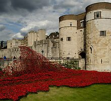 Tower of London Remembers by emmelined