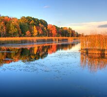 Fall Colours - Mer Bleue Bog - Boardwalk by Jean-Paul Fournier