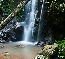 Kadjagooma Falls, Warrie Circuit by Shelley Warbrooke