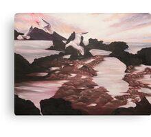 L'isola dei gabbiani Canvas Print