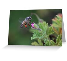 Pollen Payload  Greeting Card