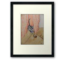 Mist col tribolo Framed Print