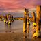 Old pier at Sunset - Clifton Springs by Hans Kawitzki