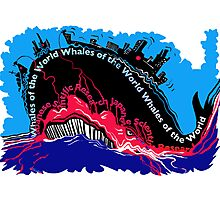 Whales of the World Photographic Print