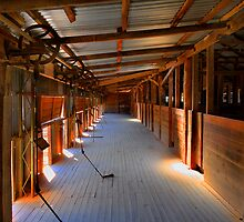 Old shearing shed - Lake Menindee by Hans Kawitzki