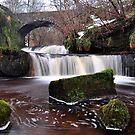 The Glen Waterfall,Kilsyth,Scotland by Jim Wilson