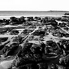 Rock Platform by LeahK