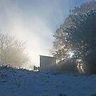 Looking at the Winter Dawn by John Keates