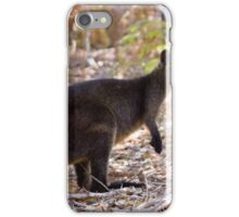 Swamp Wallaby iPhone Case/Skin