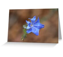Macro of a Lechenaultia Greeting Card