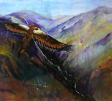 eagle eye view by Suellen Terry
