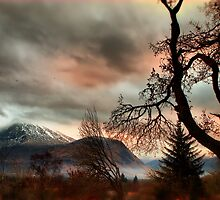 Ben Nevis in the shadow of a tree by Nik Sargent www.inpictur.es