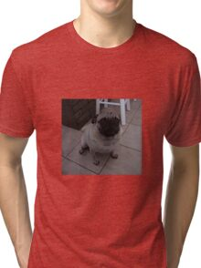 Fawn Pug Sitting on the Tile Floor Tri-blend T-Shirt