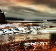 Loch Laggan in ice and mist by Nik Sargent www.inpictur.es