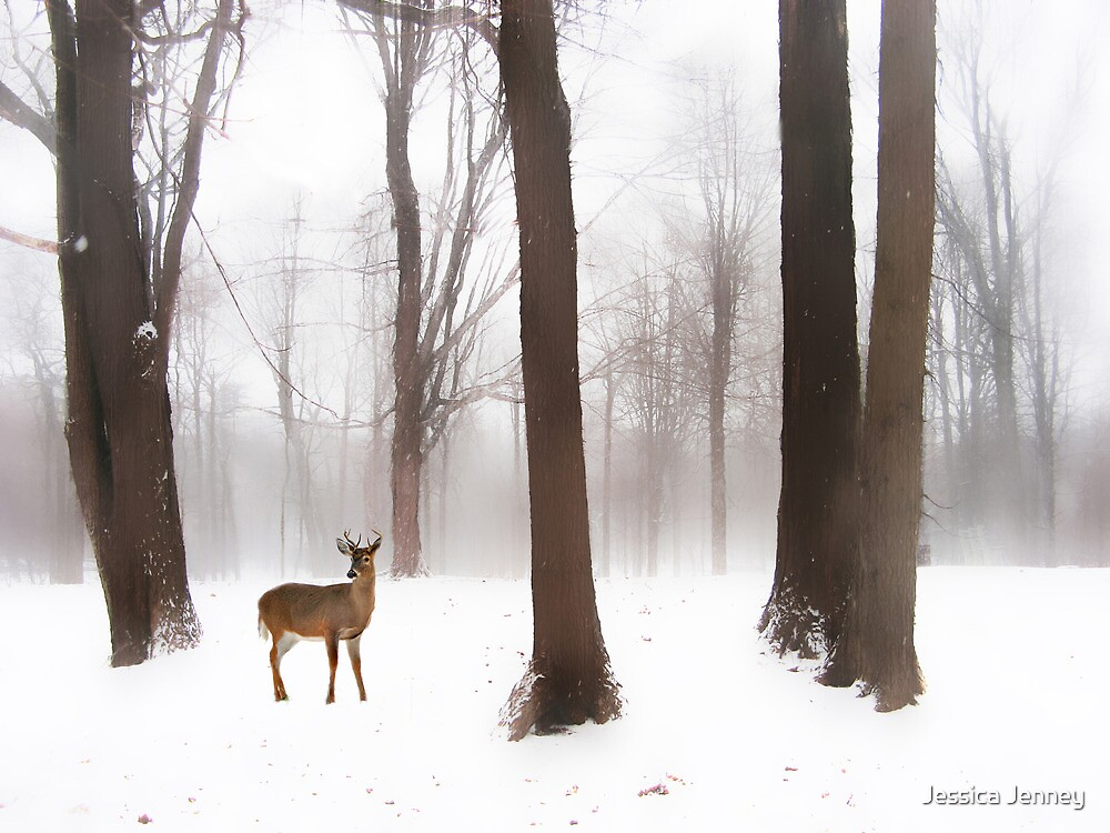 As Winter Calls by Jessica Jenney