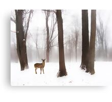 As Winter Calls Canvas Print