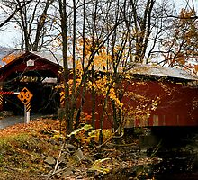 Rishel Covered Bridge by djphoto
