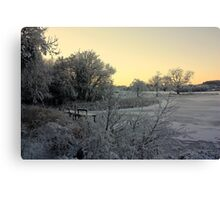 Town Lake - Frozen  Canvas Print