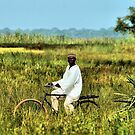 Village Biker on an African Harley Davidson by joshuatree2