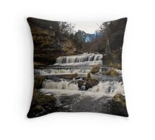 Willow River Falls II - WI Throw Pillow