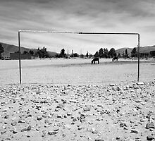 Donkey Football - Coctaca, Argentina by Sarah Hodgkins