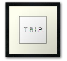 TRIP LSD ACID PATTERN FRACTALS Framed Print