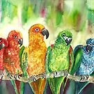 Tropical Birds by mleboeuf
