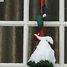 the bell the door  by LisaBeth