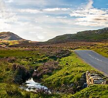 Schiehallion road - single track in central scotland by juergenkonzak