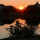 #482    View Of Spring Lake At Sunset by MyInnereyeMike
