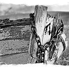Memories soaked in aging timbers by Winksy