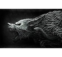 The Black Dragon Photographic Print