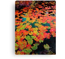 River of Hearts Canvas Print