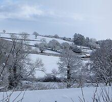 Winter Devon landscape by durzey