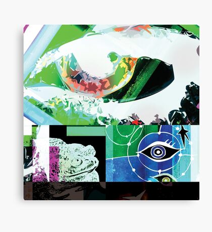 WATCHFUL EYES AND A MAJESTIC FROG Canvas Print