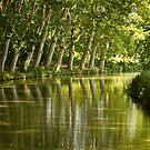 Canal du Midi 1 by Philip Alexander