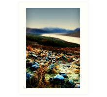 Frozen Rocks and Grass in close up Art Print