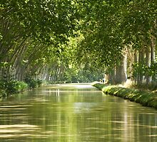 Canal du Midi 2 by Philip Alexander
